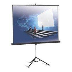 Projectiescherm Professional (200 x 150 cm)